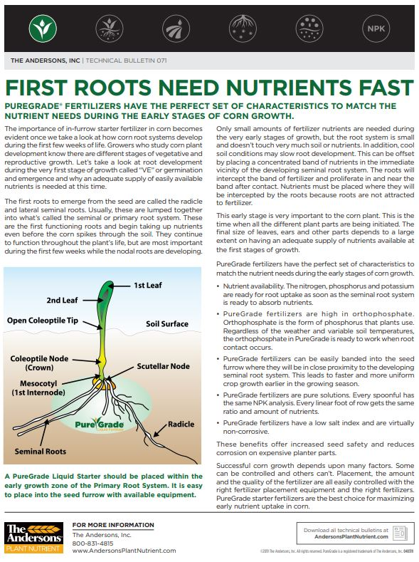 Technical Bulletin 71: First Roots Need Nutrients Fast