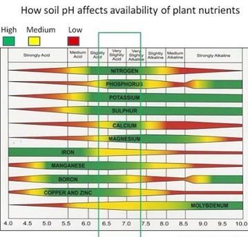 Figure 2: Nutrient availability vs. pH chart by Purdue University